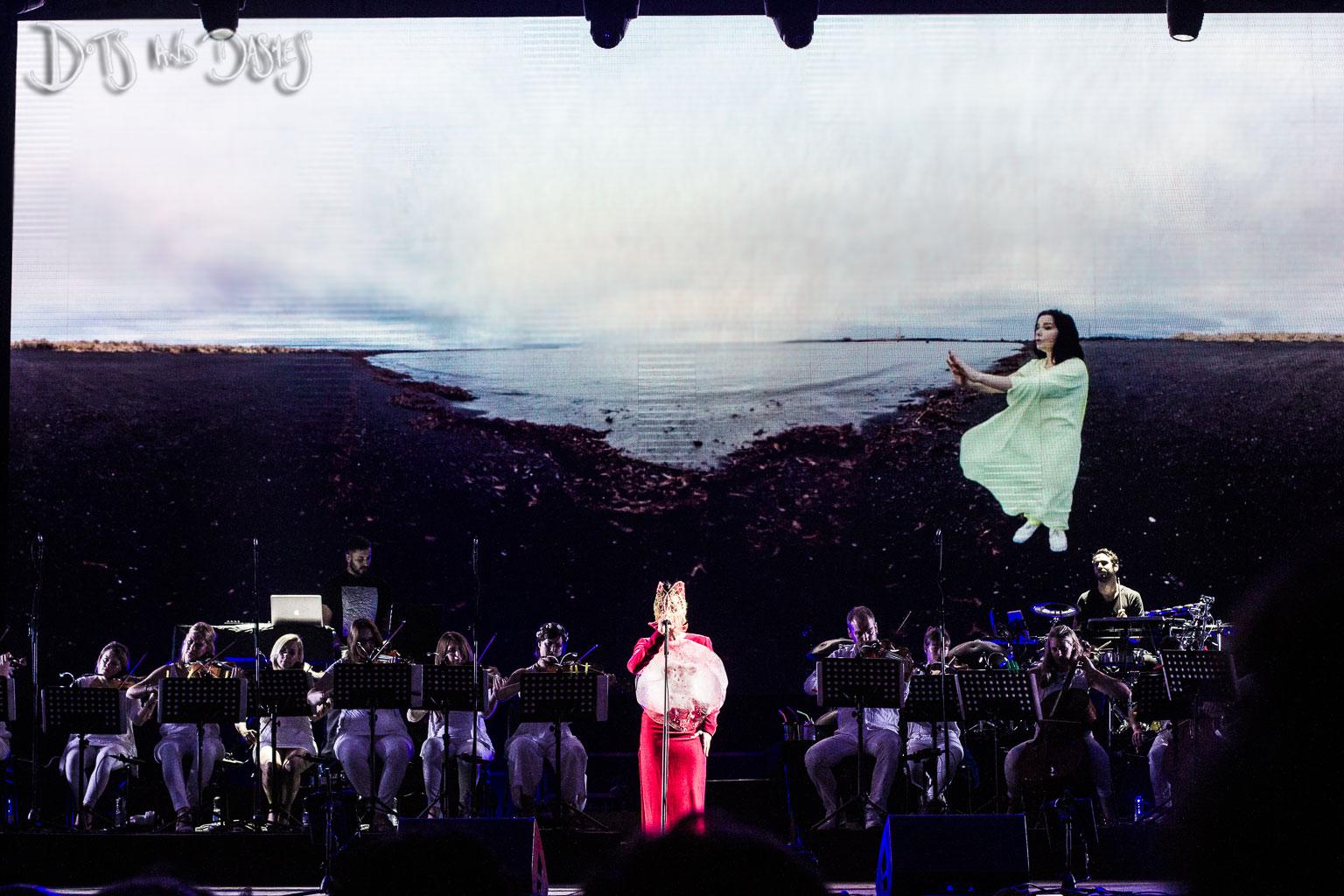 Björk, Wilderness 2015
